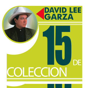 15 De Coleccion 1991 David Lee Garza