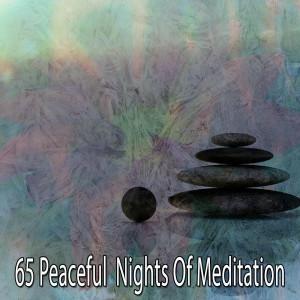 Album 65 Peaceful Nights of Meditation from Meditation Zen Master