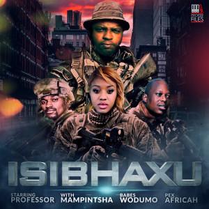 Album Isibhaxu from Babes Wodumo