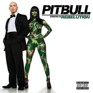 Listen to Across The World song with lyrics from Pitbull