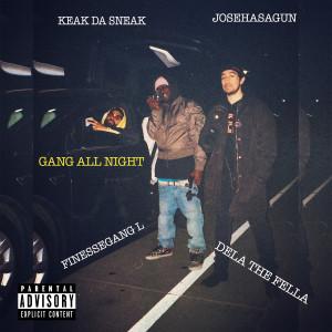 Album Gang All Night (feat. Keak Da Sneak, Josehasagun & FinesseGang L) (Explicit) from Dela the Fella
