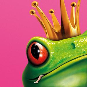 Album Dürfen darf man alles from Die Prinzen