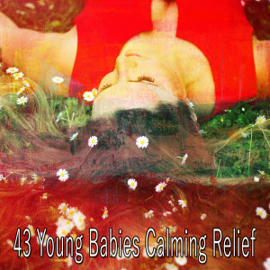 Sleep Sounds of Nature的專輯43 Young Babies Calming Relief