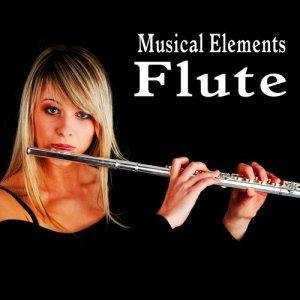 Sound Ideas的專輯Musical Elements – Flute Sound Effects