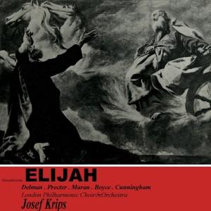 Bruce Boyce的專輯Elijah