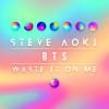 Steve Aoki Album Waste It On Me Mp3 Download