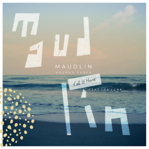 Album Maudlin (Call It Home) from Rasmus Faber