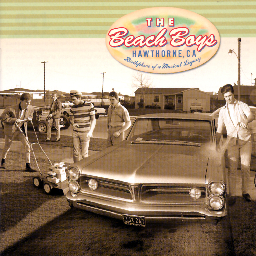 Cotton Fields (The Cotton Song) 2001 The Beach Boys