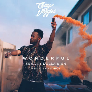 Listen to Wonderful song with lyrics from Casey Veggies