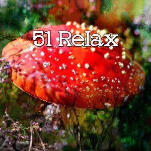 Sleep Baby Sleep的專輯51 Relax