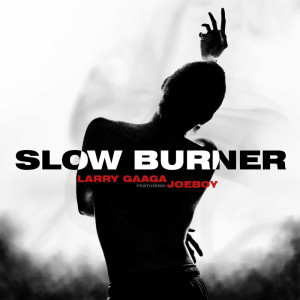 Listen to Slow Burner (Explicit) song with lyrics from Larry Gaaga