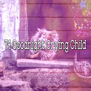 Album 74 Goodnight Crying Child from Sounds of Nature Relaxation
