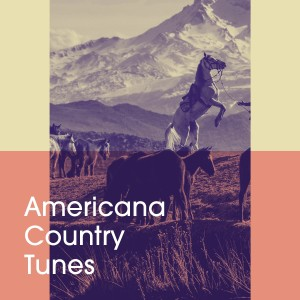Album Americana Country Tunes from Country And Western