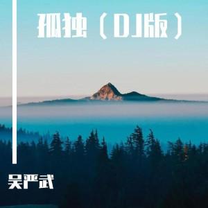 張宇的專輯孤獨