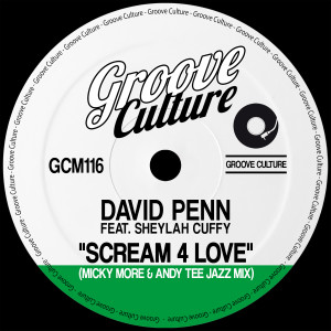 Album Scream 4 Love (Micky More & Andy Tee Jazz Mixes) from David Penn