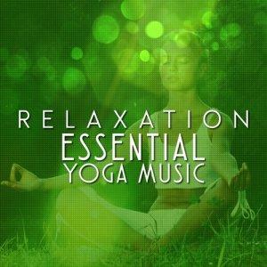 收聽Yoga Music的Forest Dusk歌詞歌曲