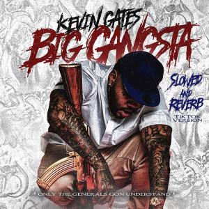 Kevin Gates的專輯Big Gangsta (Slowed and Reverb TikTok Version) (Explicit)