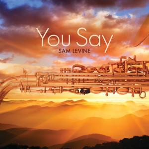 Album You Say from Sam Levine