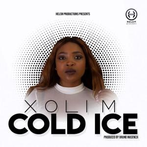 Album Cold Ice from Xoli M