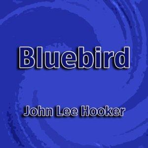 John Lee Hooker的專輯Bluebird