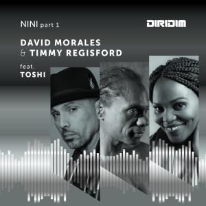 Album Nini, Pt. 1 from Toshi