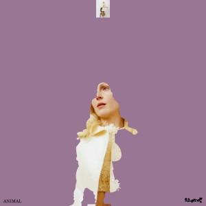 Album Animal from Lump