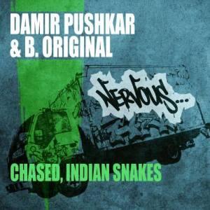 Album Chased / Indian Snakes from Damir Pushkar & B.Original