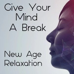 Album Give Your Mind A Break New Age Relaxation from Power Shui