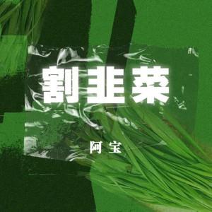 阿寶的專輯割韭菜