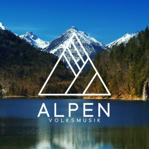Album Alpen Volksmusik (Tiroler Akkordeon Oberkrainer Musik für Traditionelle Bierparty) from Jazz Musik Akademie