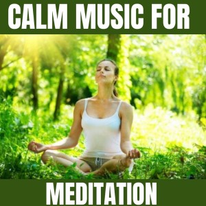 Sleep的專輯Calm Music for Meditation
