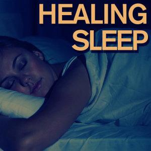Deep Sleep的專輯Healing Sleep