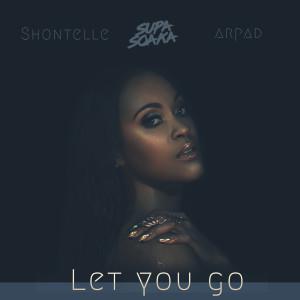 Let You Go dari Shontelle