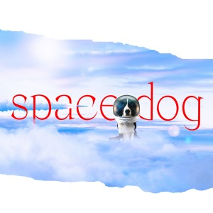 Album Space Dog from Birthh
