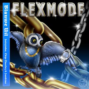 Flexmode (Explicit)