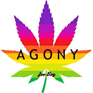 Listen to Agony song with lyrics from Joeboy