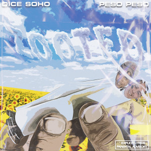 Album Zooted (Explicit) from Dice Soho