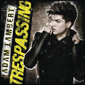 收聽Adam Lambert的Never Close Our Eyes歌詞歌曲