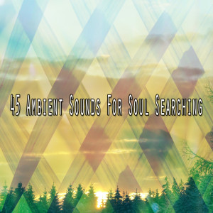 Album 45 Ambient Sounds for Soul Searching from Meditacion Música Ambiente