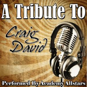 Album A Tribute to Craig David from Academy Allstars
