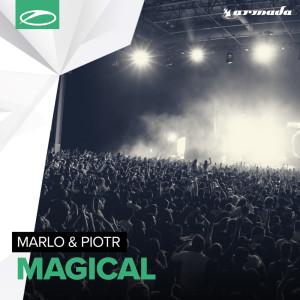 Album Magical from Piotr