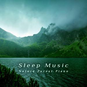 貴族音樂心靈的專輯睡眠音樂‧自然森林鋼琴曲