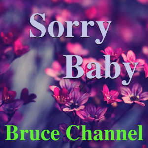 Album Sorry Baby from Bruce Channel