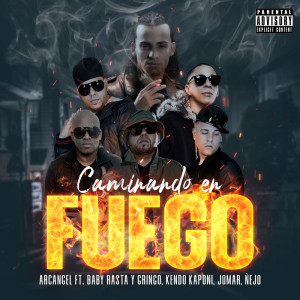 Album Caminando En Fuego from Baby Rasta Y Gringo