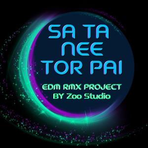 อพาร์ตเมนต์คุณป้า的專輯สถานีต่อไป (EDM RMX Project by Zoo Studio) - Single