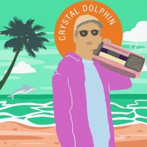 Album Crystal Dolphin (KyleYouMadeThat Remix) from engelwood