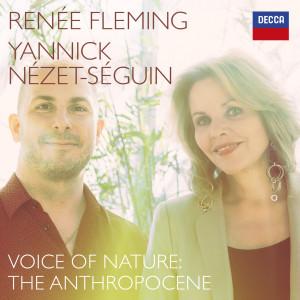 Album Puts: Evening from Renee Fleming