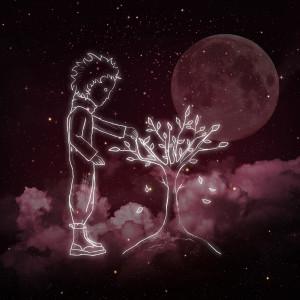 Album 夜樱花 from 김보경