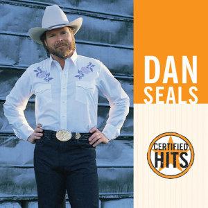 Album Certified Hits from Dan Seals