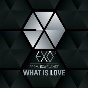 EXO-K的專輯What Is Love (Korean Version)